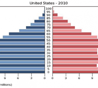 What is a Population Pyramid in Data Visualization,population pyramid examples,importance of population pyramid,population pyramids explained,data visualization guidelines,advanced data visualization,graph data visualization,data visualisation techniques,histogram data visualization
